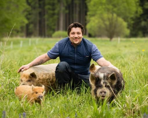 Schweine streicheln im Waldviertel