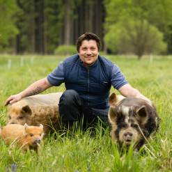 Stroking pigs in the Waldviertel