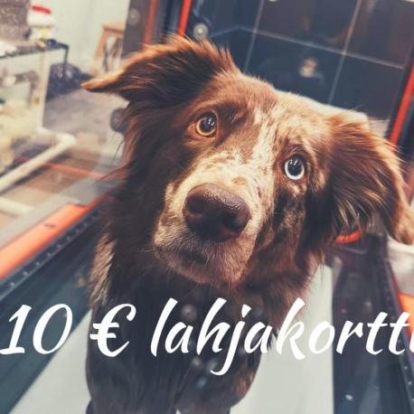 lahjakortti10