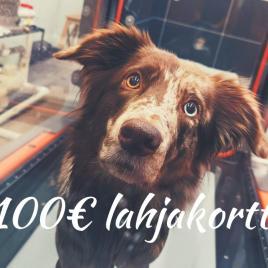 Eläinfysio.fi lahjakortti palveluihin tai verkkokauppaan, 100€