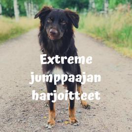Extreme jumppaajan harjoitteet -verkkokurssi