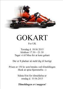 UK Gokart 18-06-2015