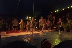 Cirkus Koloni 201539
