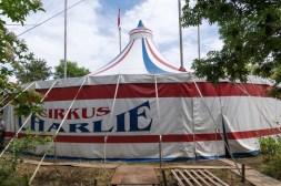 Cirkus Koloni 20155