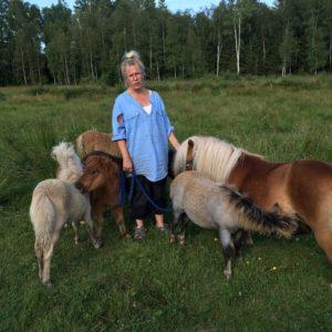 Minishettisar, Isa och Minigänget skriven av Lotta Hylander