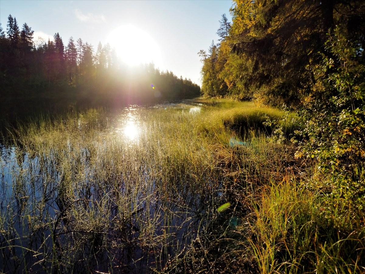 Jyrkkäkoski ja Pudasjärvi