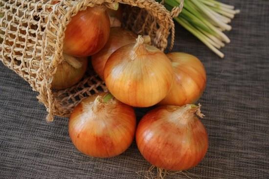 029.onion3