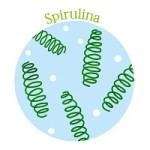 美容や疲れに効果的スピルリナの栄養は?気になる副作用、飲み方を紹介!