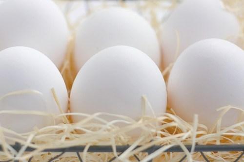 151.egg2