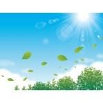 7月、8月のアレルギー・花粉症の原因は?夏のアレルゲンを徹底分析!!