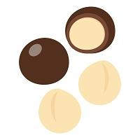 196.macadamia-nuts