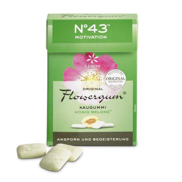 Flowergumm 43 Motivation Lemon Pharma Original Bachblüte Bach flowers Anspron und Begeisterung Murnauers