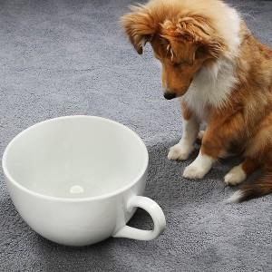 大きなマグカップはいかが わんちゃんび呆然