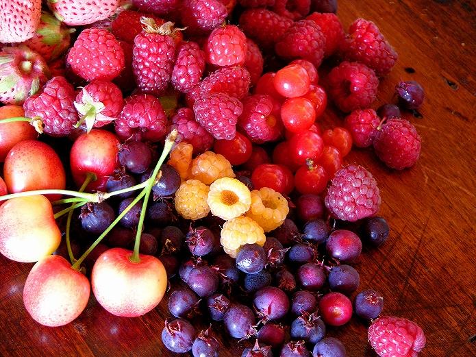季節のフルーツ果物をおいしく食べよ