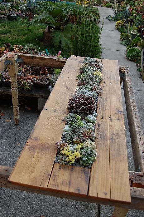 お庭でガーデニング・観葉植物をもっと可愛くおしゃれに!プランター・鉢を木製パレットでDIYする014