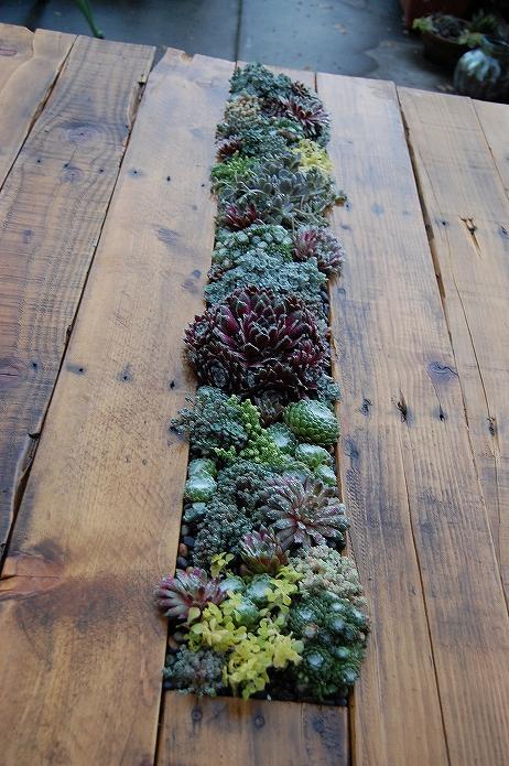 お庭でガーデニング・観葉植物をもっと可愛くおしゃれに!プランター・鉢を木製パレットでDIYする015