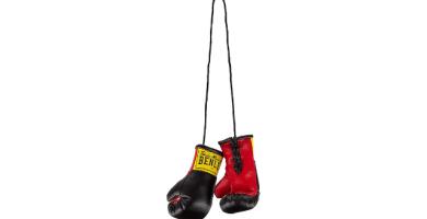 BENLEE Rocky Marciano Mini Gloves