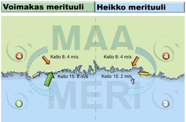 Merituuli ja tuulen suunnan vaikutus