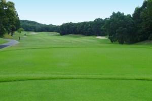 ゴルフ場の鑑定評価(企業の株価算定のための評価)東海地区