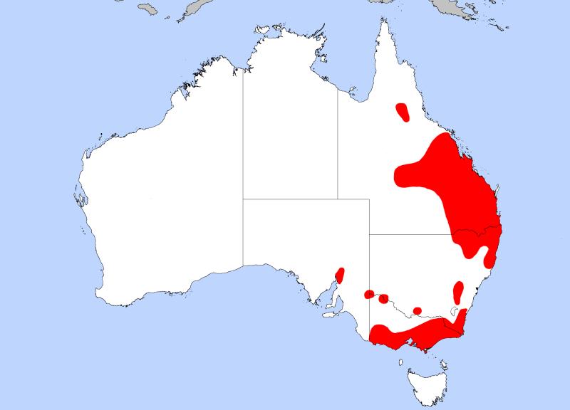 Koala_dist_map