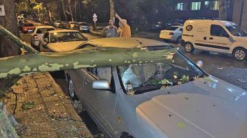 Буря помля фамилната кола на Караянчева