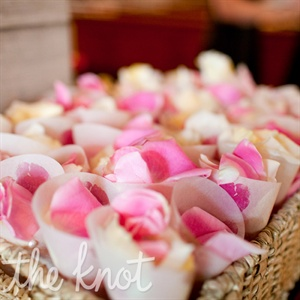 Rose Petal Toss