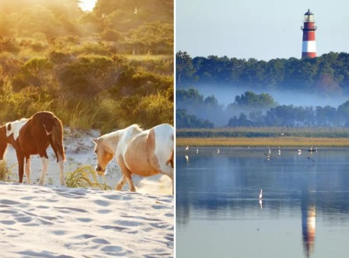 stunning island vacations to take without a passport chincoteague island virginia
