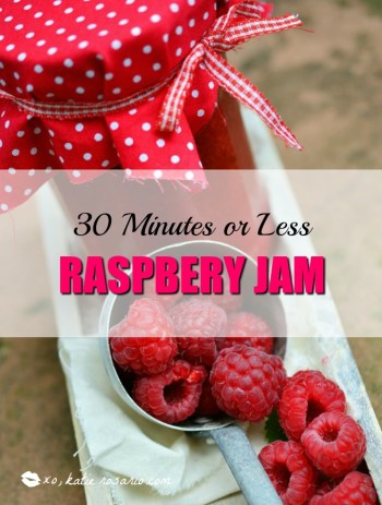 30 Minutes or Less Raspberry Jam: OMG! I love raspberry jam and I didn't know you can make it so fast! I totally love how easy it is to make raspberry jam in 30 minutes. I like this recipe because it you can use fresh or frozen raspberries. Also this is great for baking with! It works as a filling in cakes, cupcakes, cookies and other baked goods. It is super easy to freeze or just eat out of the jar! Can't wait to use this raspberry jam in my cakes! Pinning now!