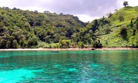 Επείγουσες ρυθμίσεις για κατεδαφίσεις αυθαίρετων κτισμάτων σε αιγιαλό και δασικές εκτάσεις
