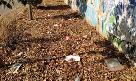 Επιτυχημένη Δράση Καθαρισμού σε περιοχή του Παπάγου