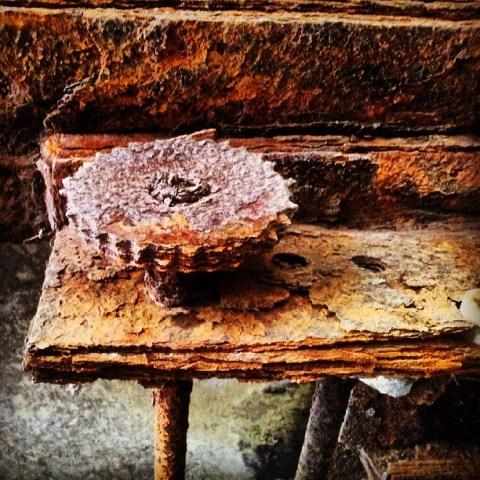 Rusty past #3