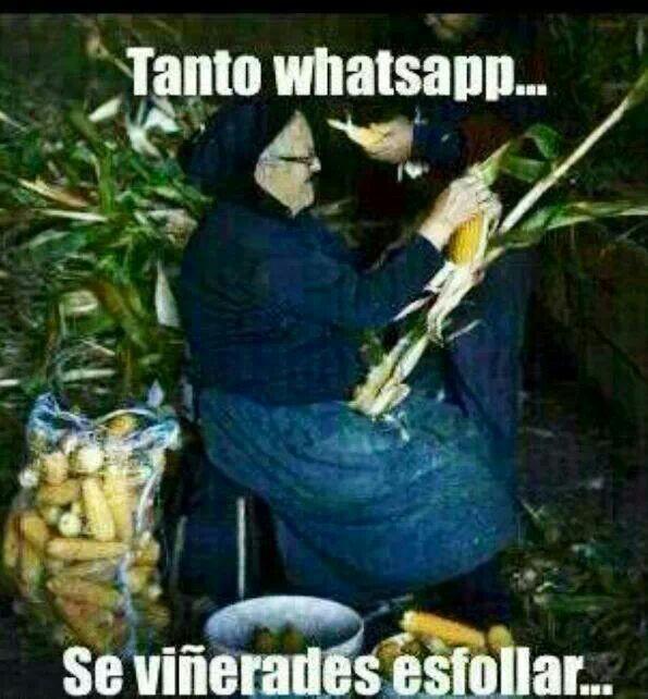 Tanto whatsapp e pouco esfollar no millo