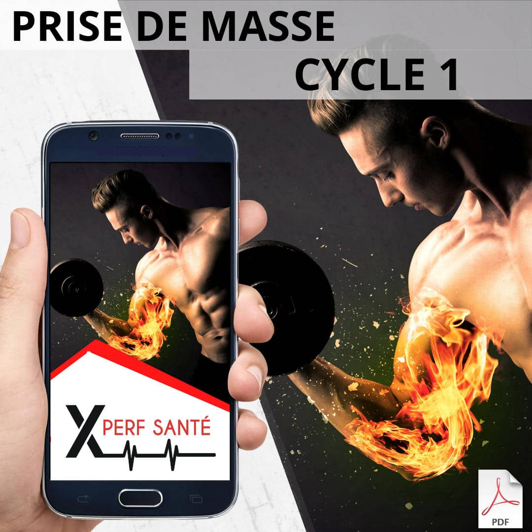 Prise de masse Cycle 1