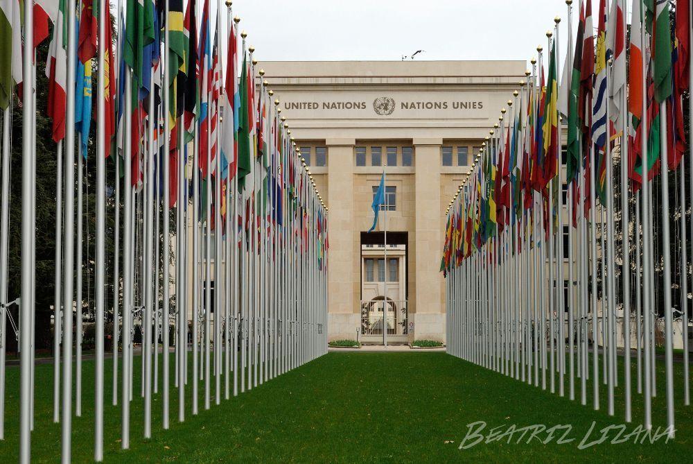 banderas_naciones_unidas