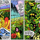 Fun Fact: This poppy-field environment first appeared in Uncanny X-Men #175, where Cyclops used it to take down Rogue. (New Mutants #35)