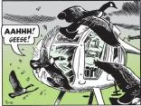 marktrail_geese_vs_helicopter