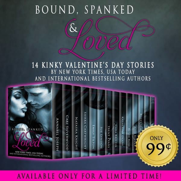 boundspankedloved_promo