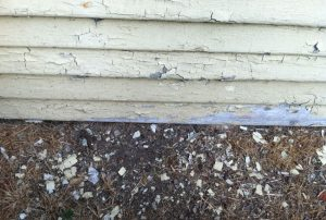 Deteriorated-Siding-and-Chips_850-x-572_12-27-2015_IMG_0772