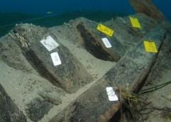Ναυάγιο της ισπανικής θαλασσοκρατίας της εποχής του Φιλίππου Β΄, στη Ζάκυνθο