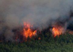 ΣΥΣΚΕΨΗ ΦΟΡΕΩΝ ΓΙΑ ΘΕΜΑΤΑ ΠΥΡΟΠΡΟΣΤΑΣΙΑΣ: Ποια σημεία εγκυμονούν κίνδυνο πυρκαγιάς