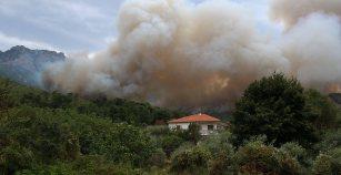 Φωτιά στην Ποταμιά Θάσου έκαψε 5 στρέμματα δασικής γης και λίγες ελιές