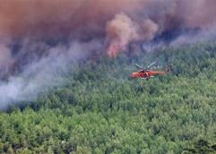 Απαγόρευση κυκλοφορίας στο σύνολο των δασικών εκτάσεων της Θάσου λόγω του πολύ υψηλού κίνδυνου πυρκαγιάς (κατηγορία κινδύνου 4) για 15-09-2020
