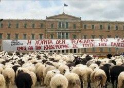 Είμαστε πολίτες ή πρόβατα που σταβλίζονται;