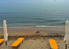 ΣΤΗΝ ΡΑΨΑΝΗ ΚΑΙ ΣΤΗΝ ΚΕΡΑΜΩΤΗ: Δύο θαλάσσιες χελώνες εντοπίστηκαν νεκρές σε παραλίες