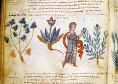 Κρυμμένοι θησαυροί και κώδικες στα μικροφίλμ και τις μικρογραφίες της Μονής Βλατάδων