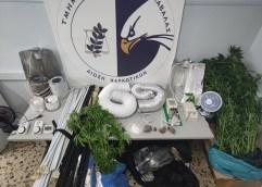 ΣΕ ΛΕΩΦΟΡΕΙΑ, ΠΛΟΙΑ ΚΑΙ ΟΡΕΙΝΕΣ ΠΕΡΙΟΧΕΣ: Συνελήφθησαν 3 μέλη συμμορίας που δραστηριοποιούνταν στη διακίνηση ναρκωτικών στην Καβάλα και τη Θάσο