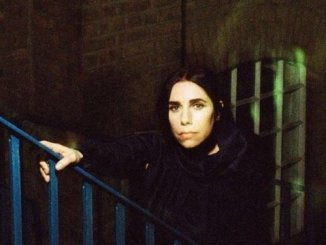 "PJ HARVEY Shares video for ""THE WHEEL"", Watch"