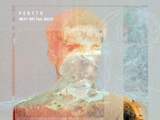 TRACK OF THE DAY: Perttu - Milky Way ft. Malou