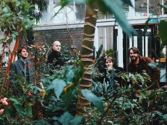 THE BE POSITIVES debut with '70s inspired mad-pop single 'Monkey (Cheetah)' - Watch Video