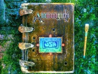 ALBUM REVIEW: Anamanaguchi - [USA]